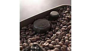 1107_f400089190-fil-global-001.jpg