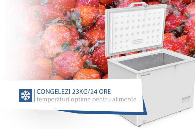 390_lada-frigorifica-mare.jpg